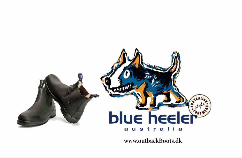 Blue Heeler boots and dogs